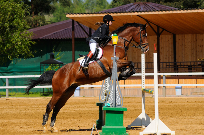 Download Show Jumping editorial photo. Image of gallop, ride, jumper - 6434211