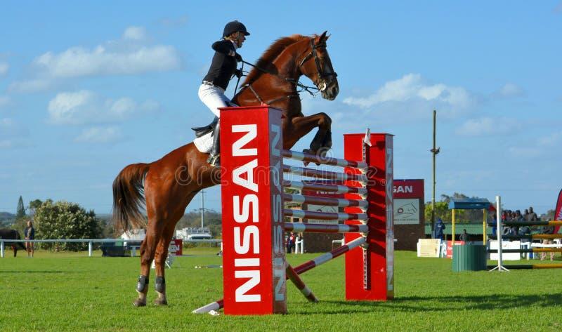 Show jumping 6 bar winner stock photo