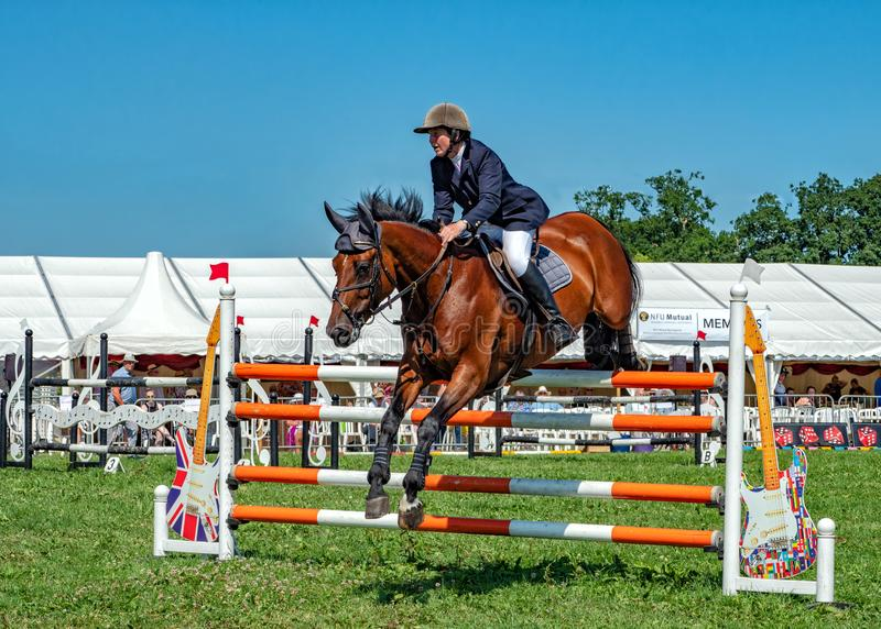 Show jumping competition at the Hanbury Countryside Show, England. A beautiful bay horse ridden by a lady competitor clearing one of the hurdles during an stock photos