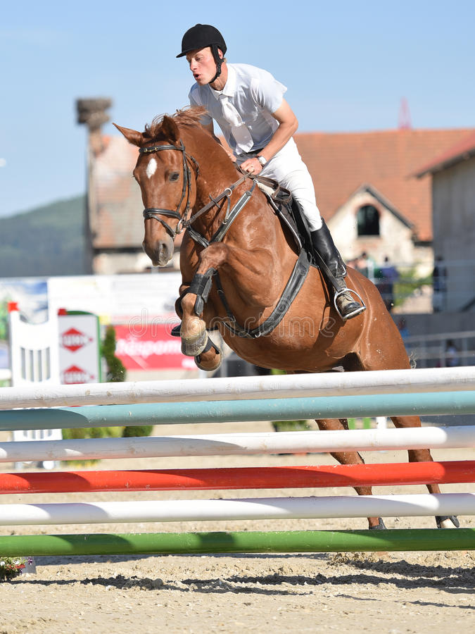 Show jumping. Horse jumping in show jumping royalty free stock images