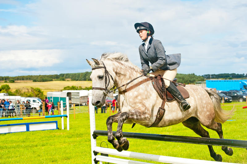 Download Show jumping at Nairn . editorial photography. Image of equestrian - 25918777