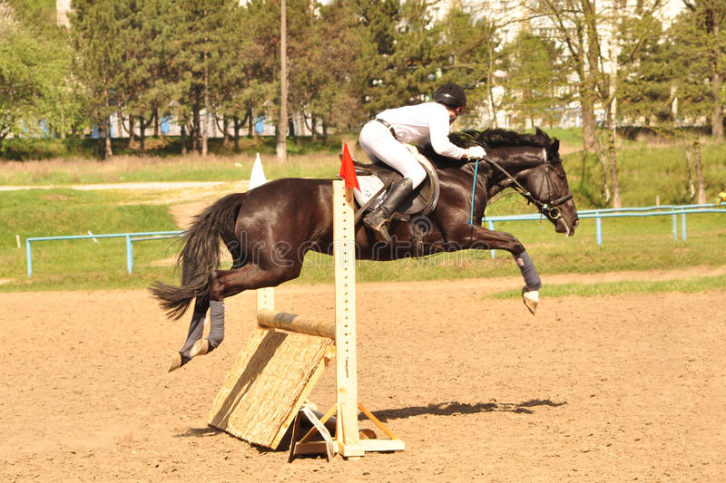 Show Jumping Open Championship In Chisinau 2012 Editorial Photo
