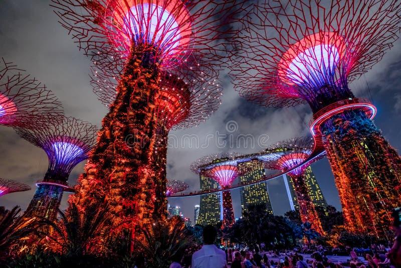 Show Supertree Singapur stockfotografie