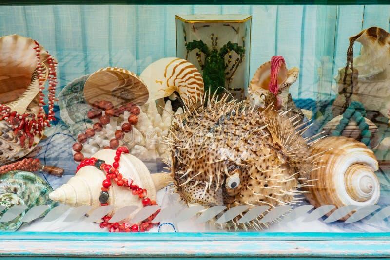 Showcase met producten van overzeese shells en paarlemoeren De de parelsarmbanden en oorringen worden verkocht in de opslag stock afbeeldingen