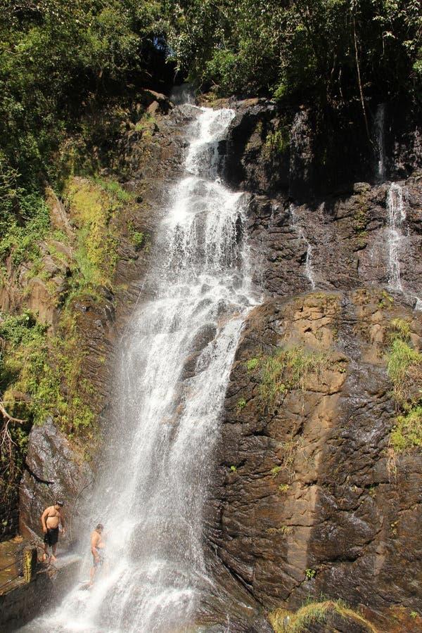 Showering in the waterfall. Valanjanganam falls, locally known as Ninnumullipara is a scenic waterfall located in Kuttikkanam in Idukki district, Kerala state royalty free stock photo