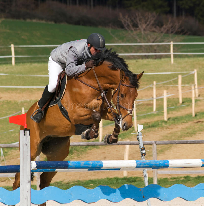 Showjumping Competition Royalty Free Stock Photos