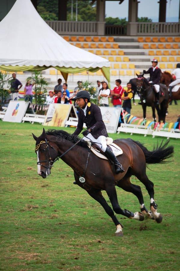 Showjumping del cavallo immagine stock