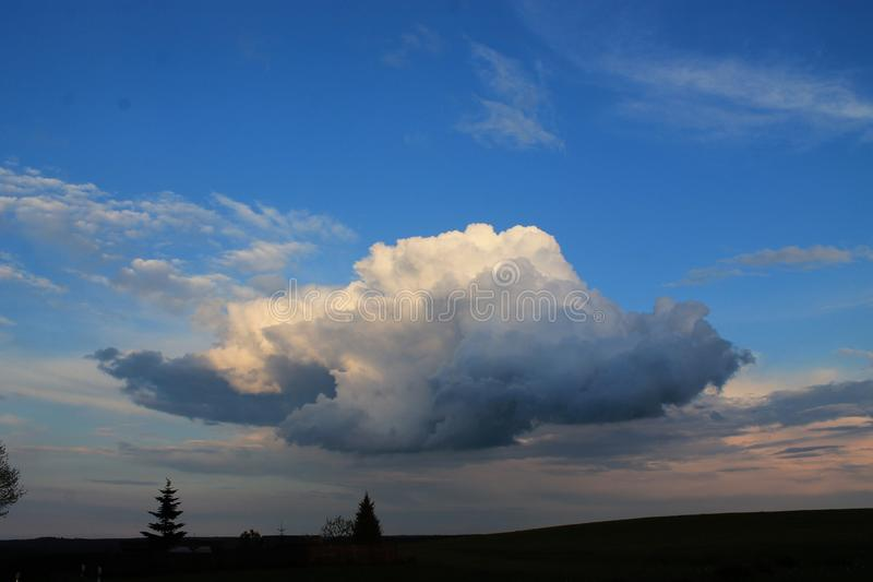 Showy Cloud royalty free stock photo