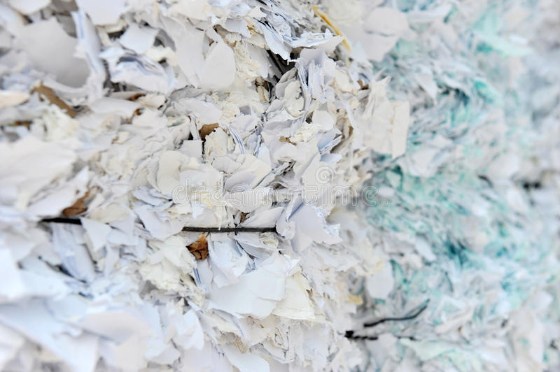 Shredded Paper Stock Photos