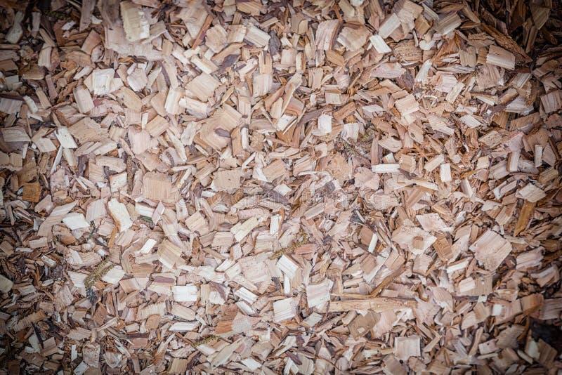 Shredded Piece of Tree Bark Background Photography royalty free stock photos