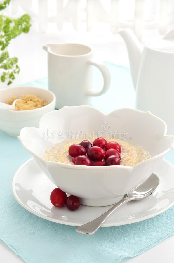 Download Shredded Wheat Cereal With Cranberries Stock Photo - Image: 38544526