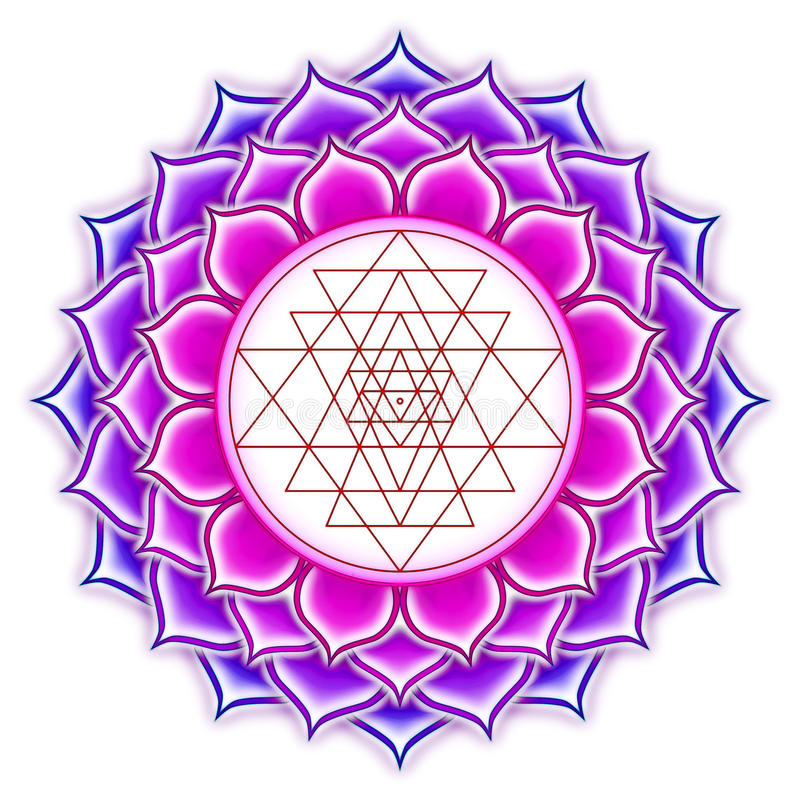Shree Yantra Lotus stock illustratie