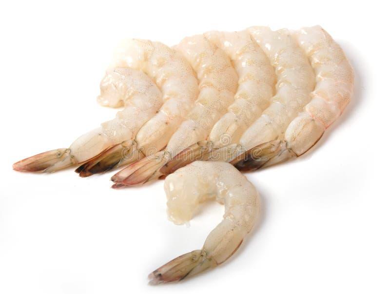 Shrimp. Prawn or shrimp, isolated on white royalty free stock images
