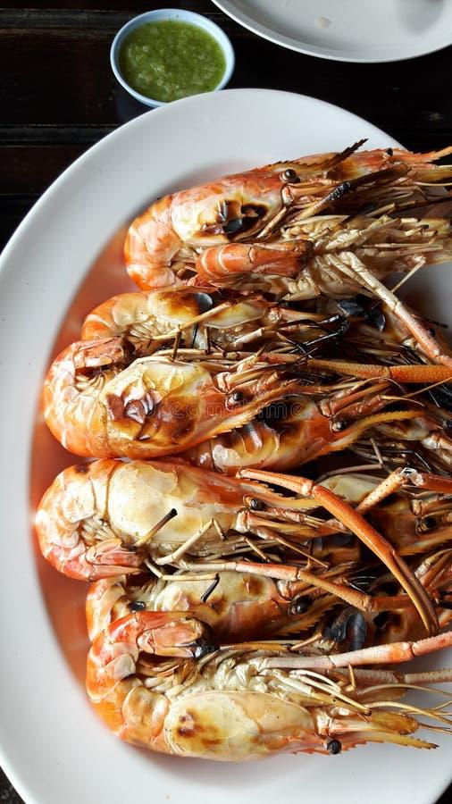 shrimp fotografia de stock