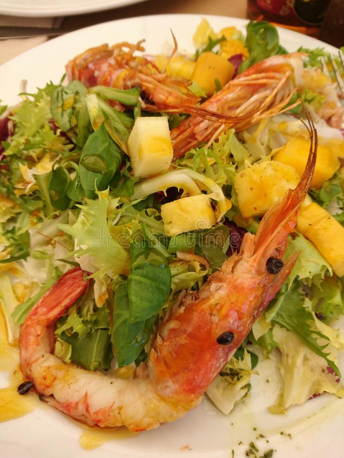 Shrimp,avocado and mango salad royalty free stock images