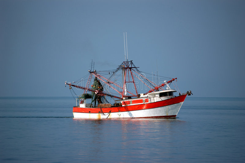 Shrimp boat at sea. A shrimp boat waits between Ft. myers and key west as the catch is sorted. Scavenging seabirds sit in the rigging royalty free stock photo