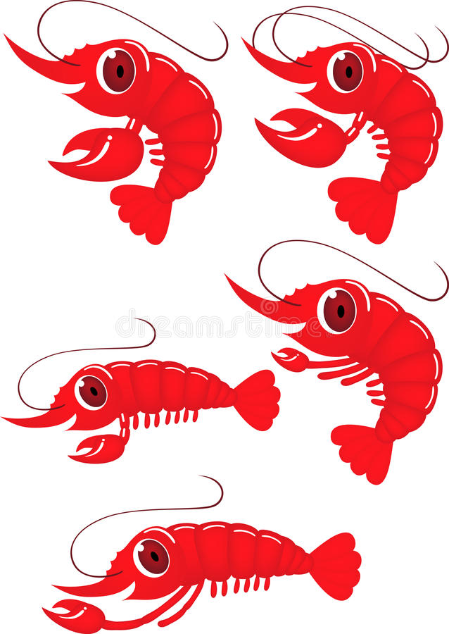 Shrimp Cartoon Royalty Free Stock Photo