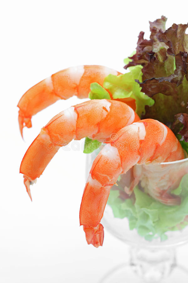 Shrimp cocktail salad stock photos