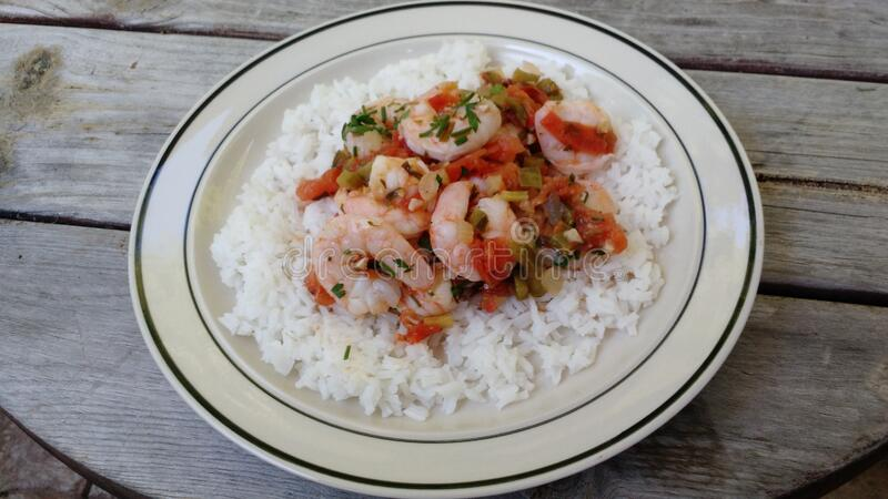 Shrimp creole over white rice stock photography