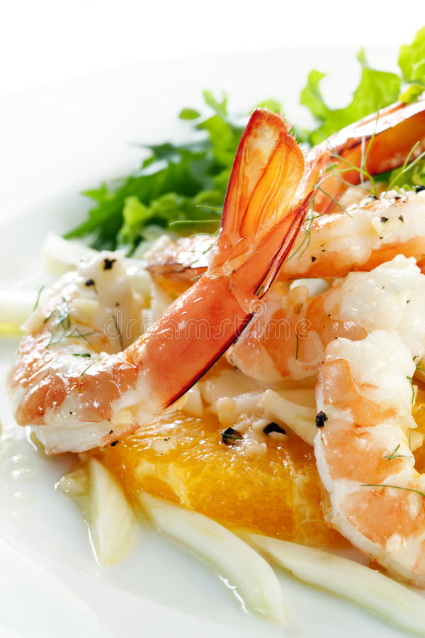 Shrimp Fennel and Orange Salad stock photography