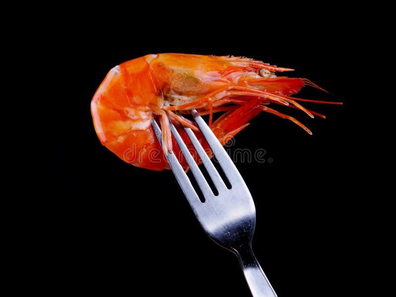 Download Shrimp on Fork stock photo. Image of crustacean, fresh - 29057938