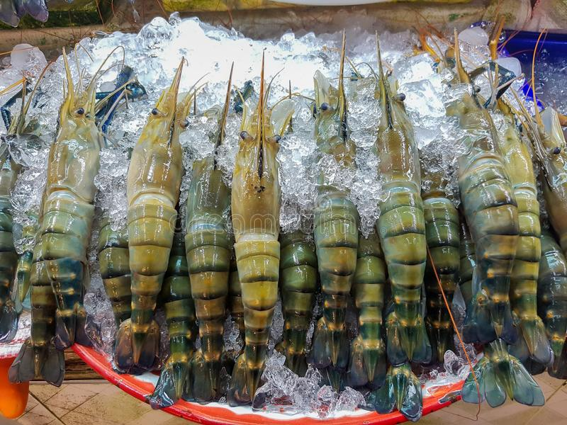 Shrimp frozen in the market. Seafood stock photos