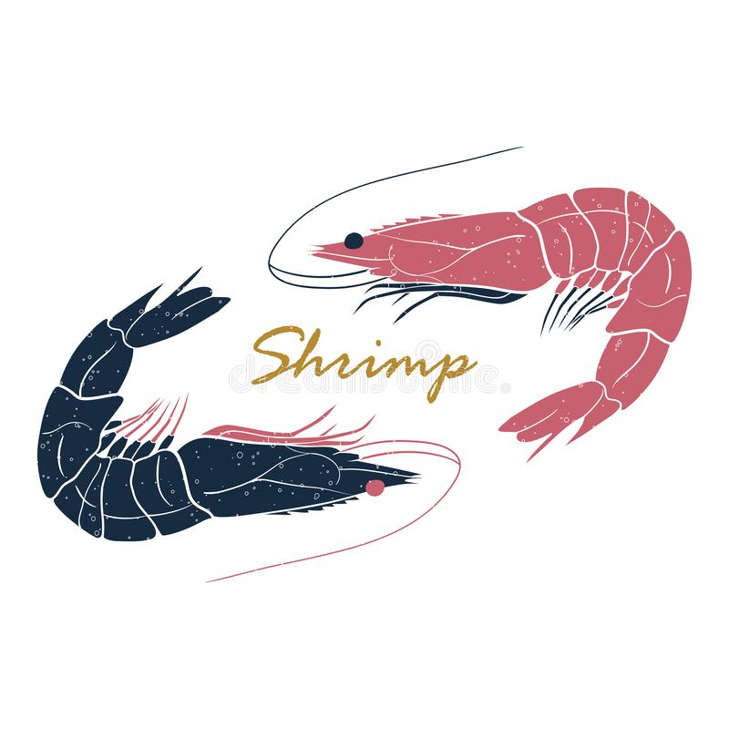 Shrimp hand drawn logo isolated on white background. Vector illustration for print, fish market label, infographics, food stock illustration