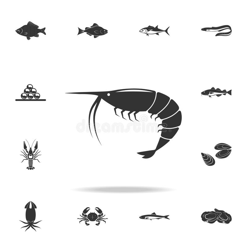 shrimp icon. Detailed set of fish illustrations. Premium quality graphic design icon. One of the collection icons for websites, we royalty free illustration