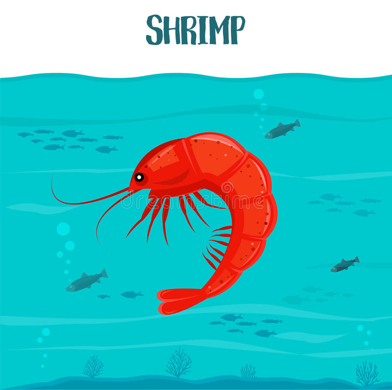 Shrimp icon. Vector illustration. Red shrimp isolated on blue water background. Seafood. Prawn in sea. For restaurant stock illustration