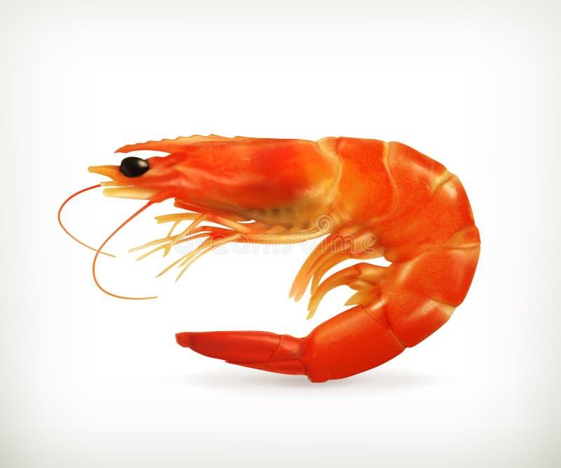 Download Shrimp Stock Image - Image: 34201131