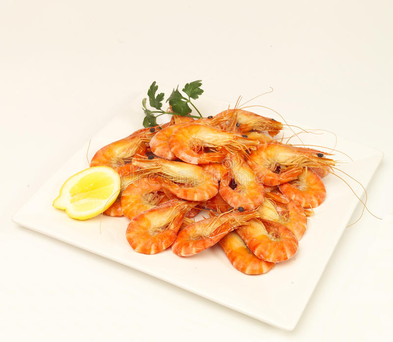 Download Shrimp platter stock photo. Image of lemon, prawns, seafood - 25132246
