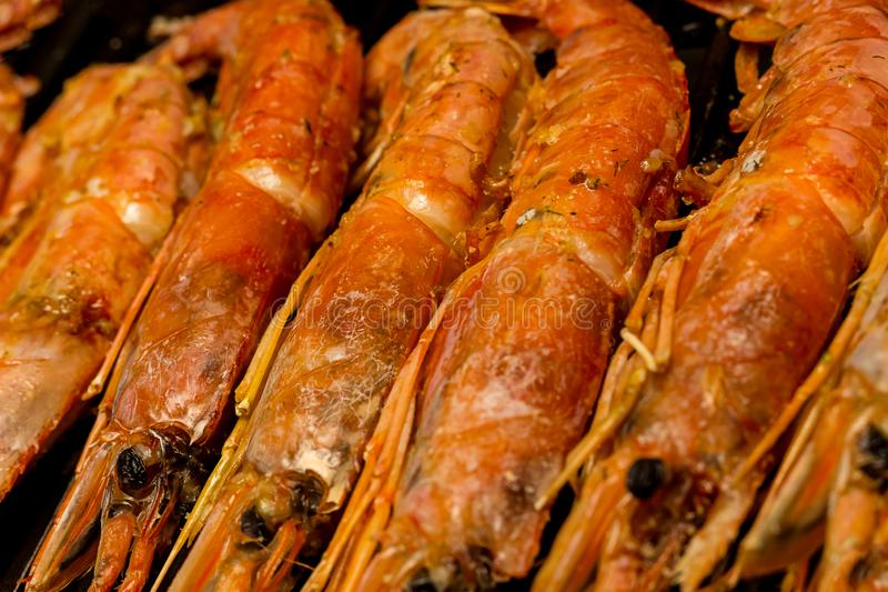 Shrimp red raw preparation we cook delicacies delicious langoustines set snacks background culinary design menu stock images