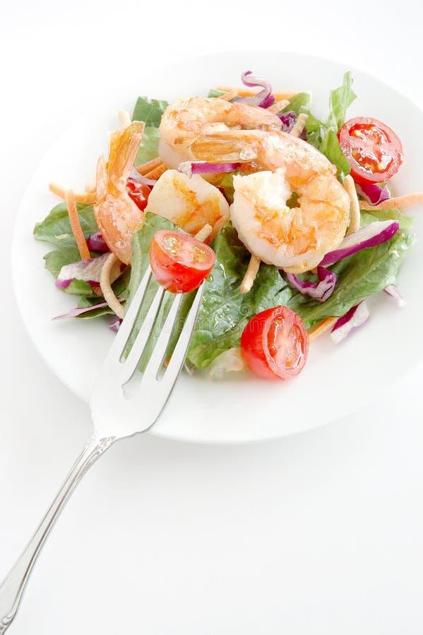 Download Shrimp Salad Royalty Free Stock Image - Image: 2314686