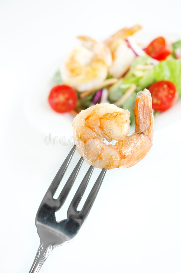 Download Shrimp salad stock photo. Image of lettuce, plate, salad - 2314688