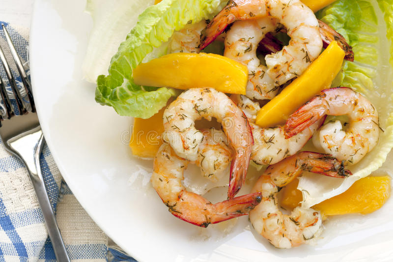 Shrimp Salad with Mango royalty free stock photography