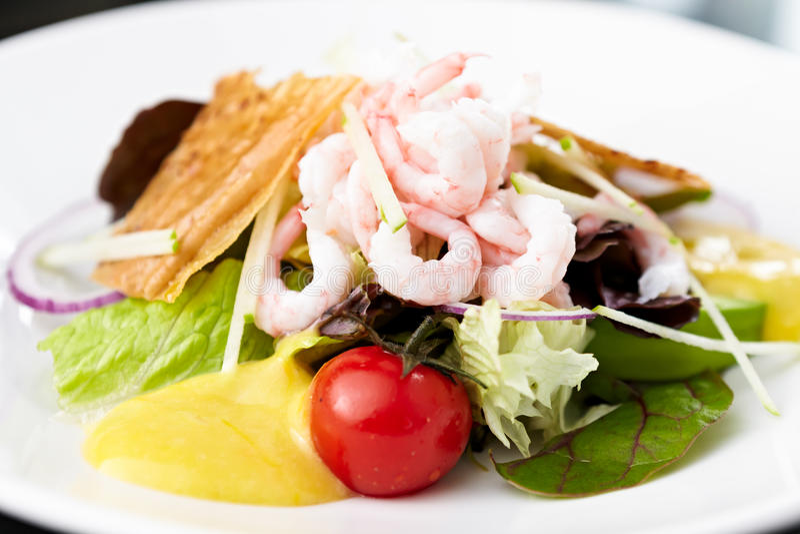 Shrimp Salad Royalty Free Stock Images