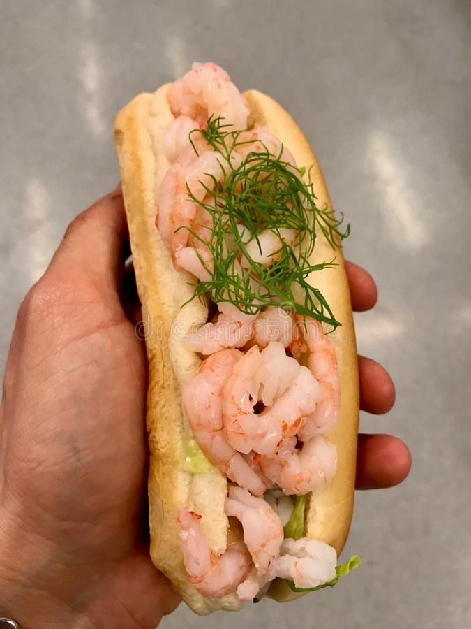 Shrimp Sandwich with Dill Holding in Hand. Seafood stock images