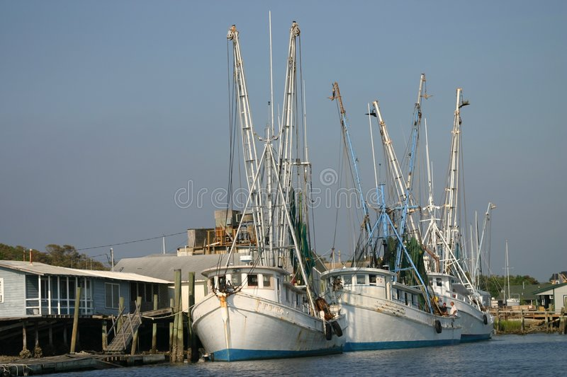 Shrimpboats royalty free stock image