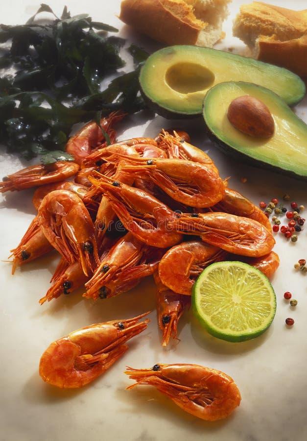 Shrimps_125431 stock afbeeldingen