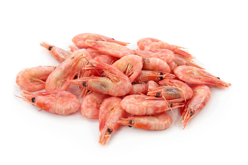 Download Shrimps stock photo. Image of ingredient, shrimp, marine - 23494630