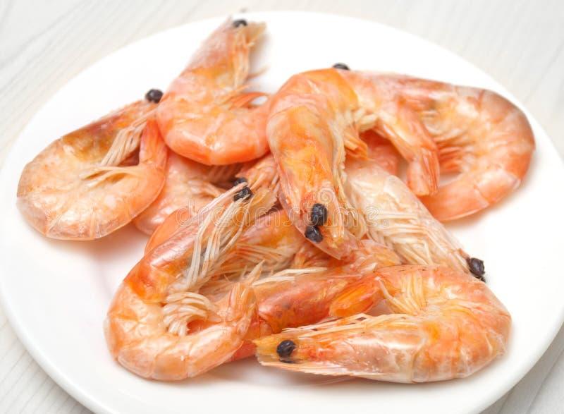 Download Shrimps stock photo. Image of king, plate, meal, shrimps - 24160030