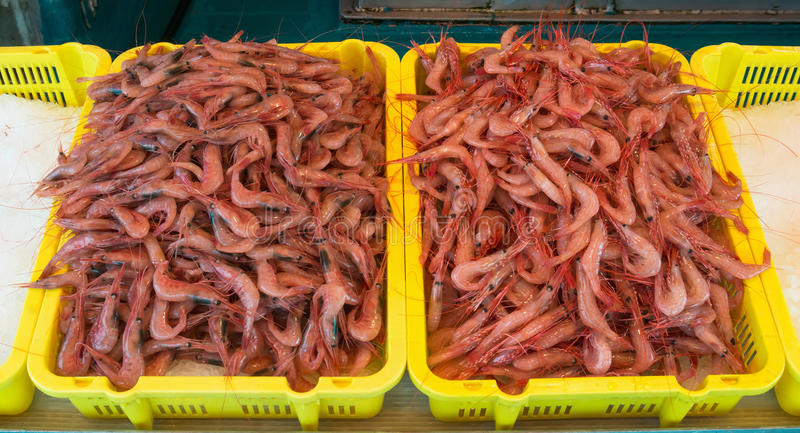 Download Shrimps Royalty Free Stock Photos - Image: 27582378
