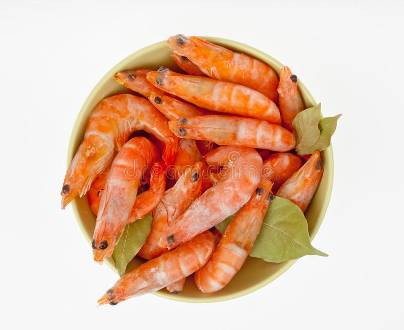 Download Shrimps Stock Images - Image: 28248584