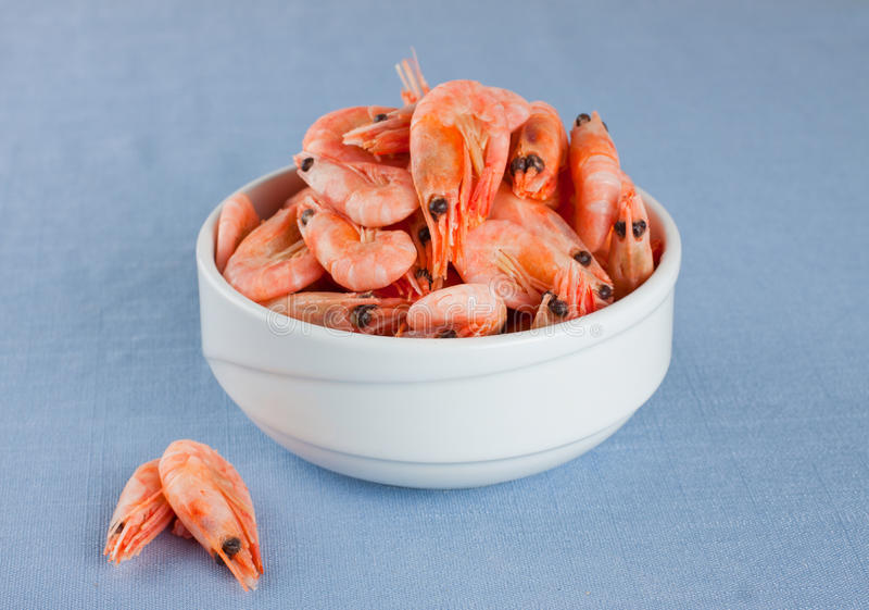 Download Shrimps stock image. Image of seafood, white, prepared - 28803661