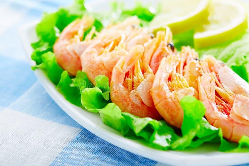 Download Shrimps stock image. Image of backgrounds, lettuce, eating - 28940259