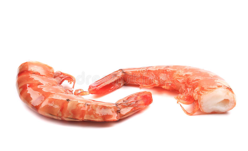 Download Shrimps close up on white. stock image. Image of barbecue - 38458943
