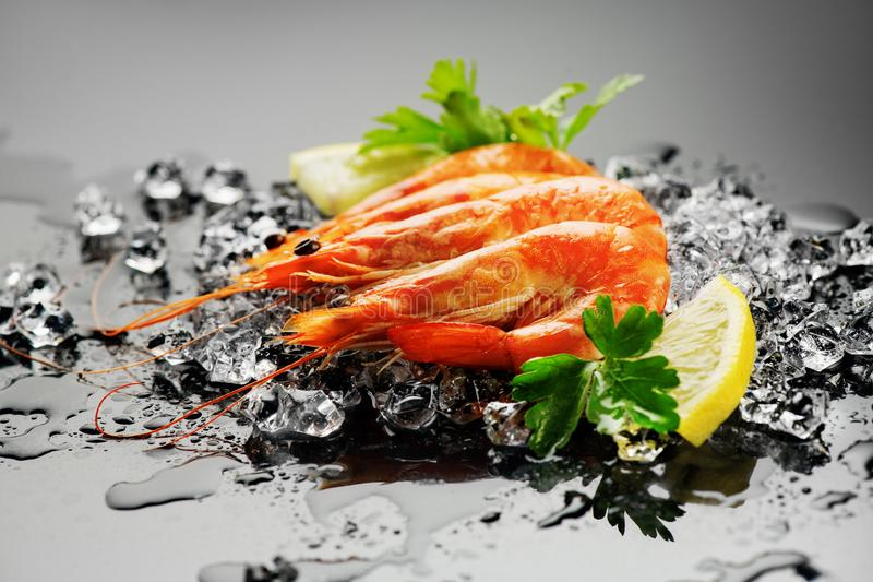 Shrimps. Fresh prawns on a black background. Seafood on crashed ice with herbs. Healthy food royalty free stock photos