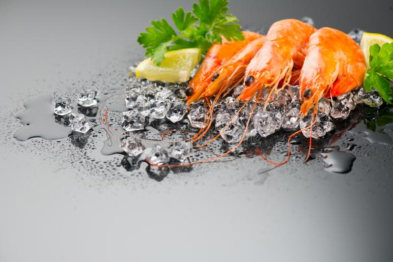 Shrimps. Fresh Prawns on a Black slate Background. Seafood on crashed ice served with herbs, dark backdrop. Served food, preparing healthy food, cooking, diet royalty free stock image