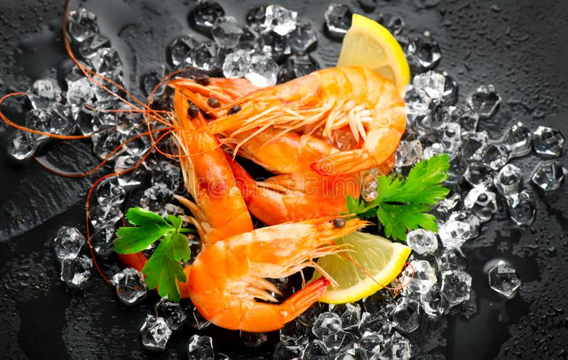 Shrimps. Fresh Prawns on a Black slate Background. Seafood on crashed ice served with herbs, dark backdrop. Served food, preparing healthy food, cooking, diet stock photography