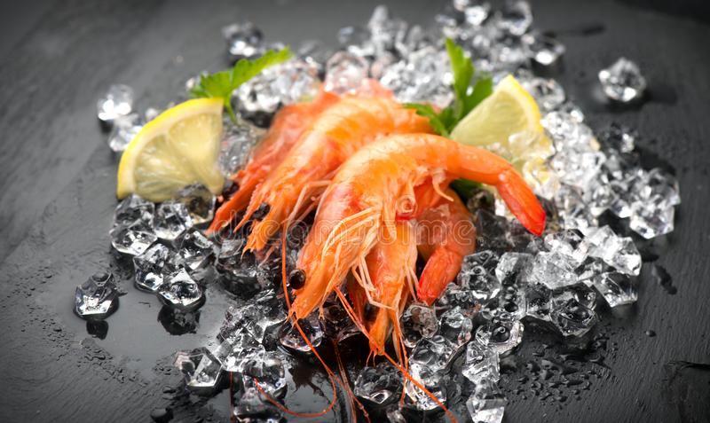 Shrimps. Fresh Prawns on a Black slate Background. Seafood on crashed ice served with herbs, dark backdrop. Served food, preparing healthy food, cooking, diet royalty free stock photos